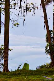 green canyon madasari 10-12 april 2015 nikon  048