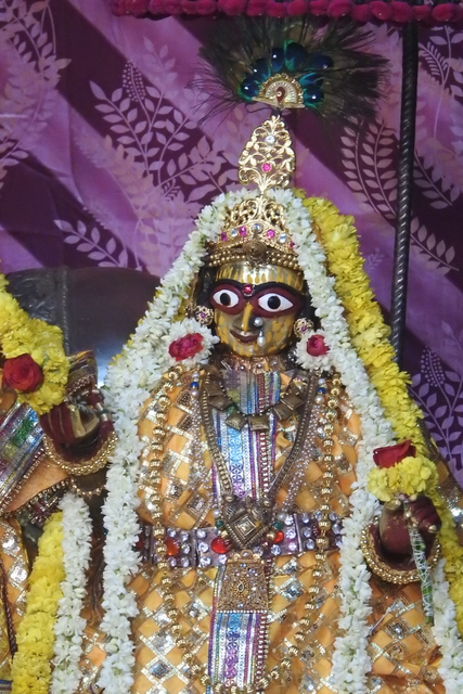 Radha Govinda Devji Deity Darshan 23 April 2016 (12)