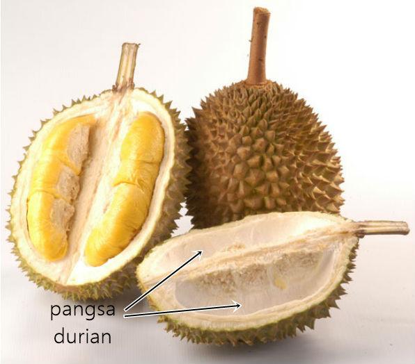 Petua hilangkan panas badan selepas makan durian