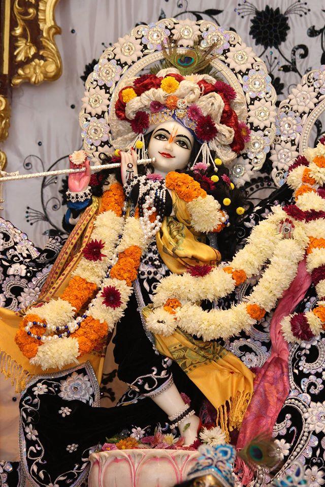 ISKCON Kanpur Deity Darshan 19 Dec 2015 (23)