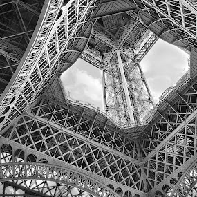 Eiffel Steel by Ewan Arnolda - Buildings & Architecture Architectural Detail ( famous, tower, iconic, white, architecture, black )