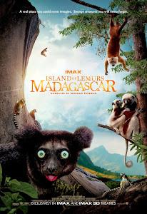 Hòn Đảo Của Vượn Cáo Ở Madagascar - Island Of Lemurs: Madagascar poster