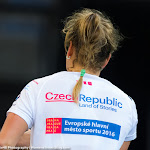 Barbora Strycova - 2015 Fed Cup Final -DSC_4241-2.jpg