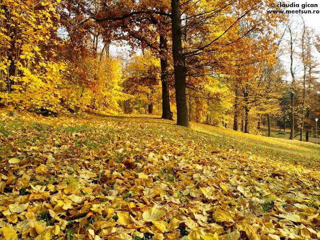 parc in Pilsen, Cehia