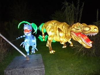 2018.12.03-046 Tyrannosaure et Vélociraptor