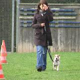 20101017 BGVP Pruefung Oktober - 0018.JPG