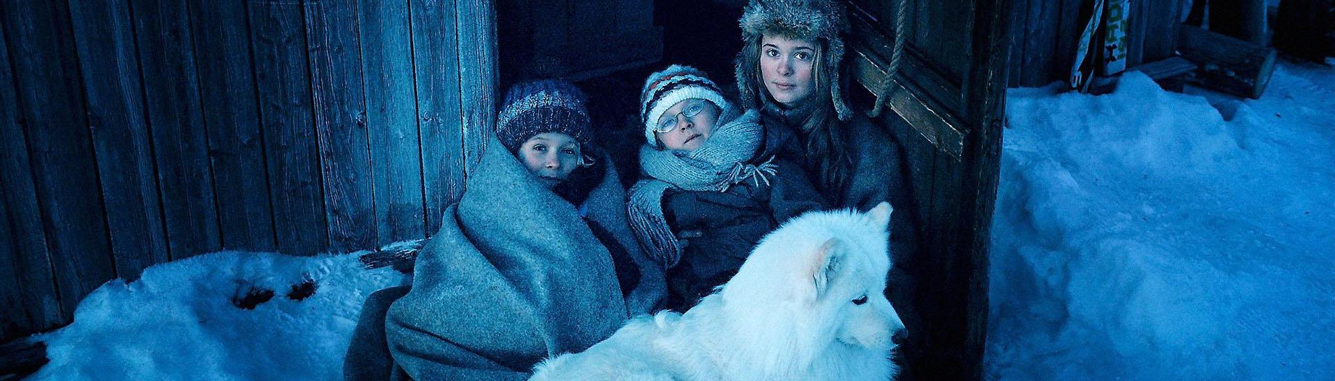 Baner filmu 'Operacja Arktyka'