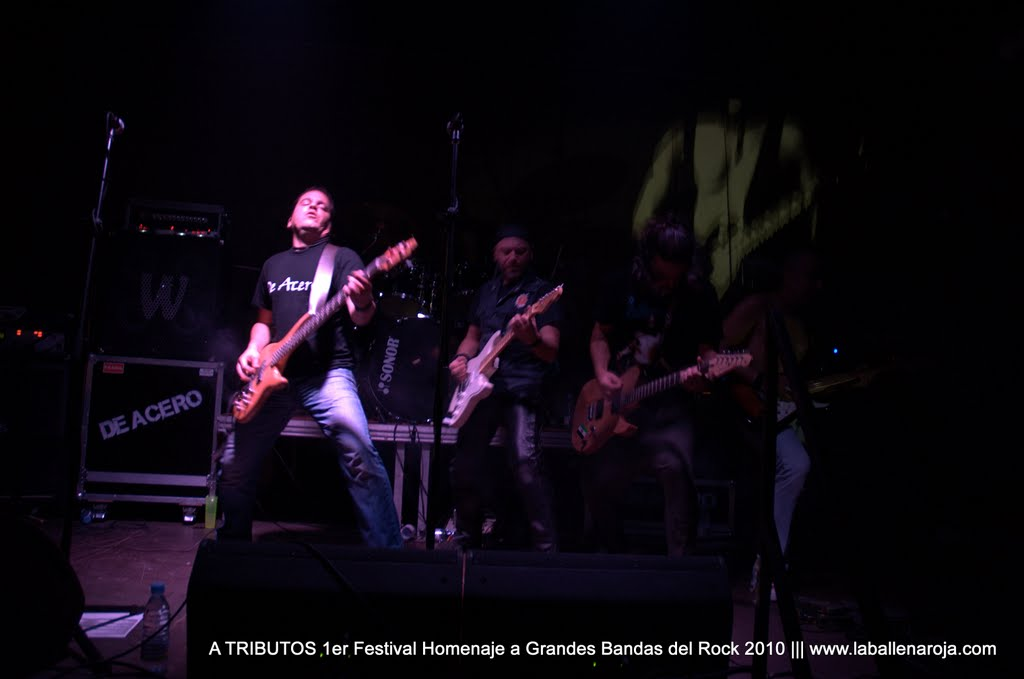 A TRIBUTOS 1er Festival Homenaje a Grandes Bandas del Rock 2010 - DSC_0155.jpg