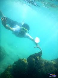 pulau pari, 23-24 mei 2015 30