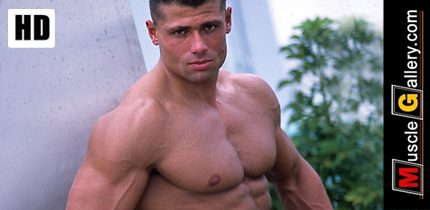 MuscleGallery - Top Male Bodybuilders