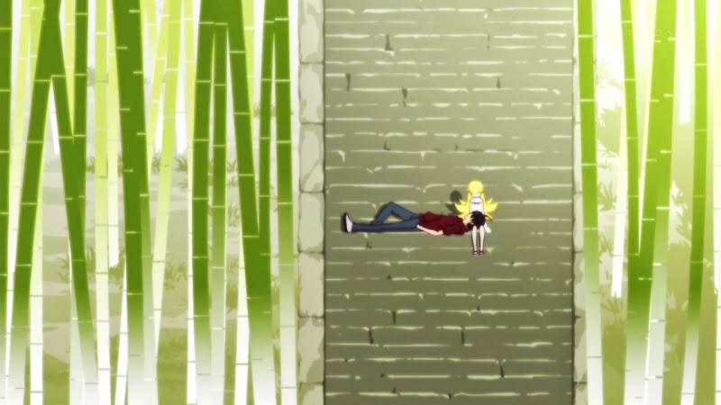 Monogatari Series: Second Season - 10 - monogatarisss_10_083.jpg