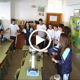 video_1.AVI