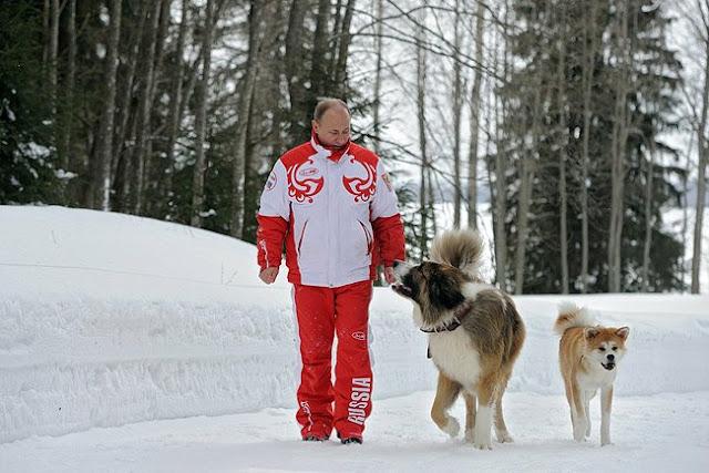 プーチン大統領、秋田犬「ゆめ」と雪上戦闘訓練(おさんぽ)の写真を公開