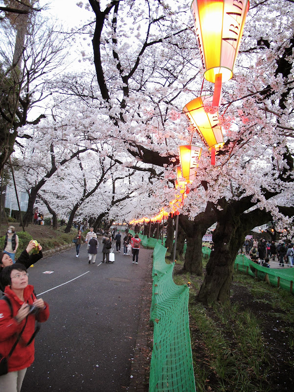 2014 Japan - Dag 1 - IMG_1212.JPG