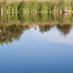 20140830_Fishing_Shpaniv_010.jpg