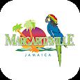 Margaritaville Rewards