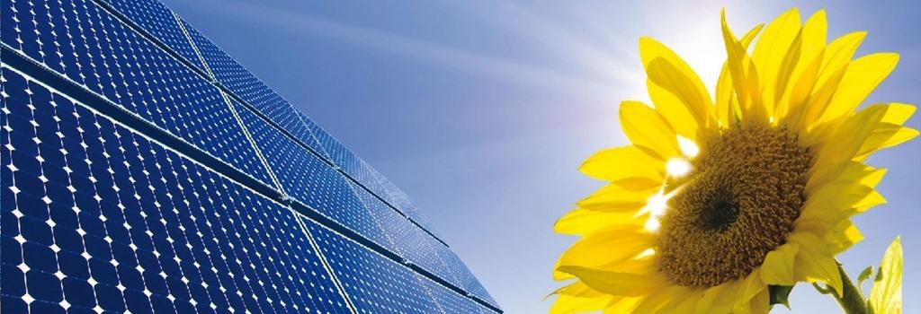 [solar-sunflow%5B5%5D]