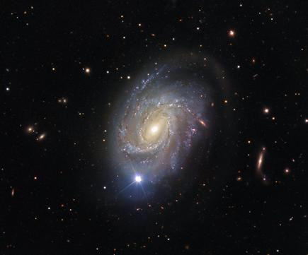 NGC 4981