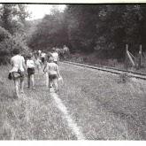n029-014-1966-tabor-sikfokut.jpg
