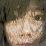 Rangsey Keo's profile photo
