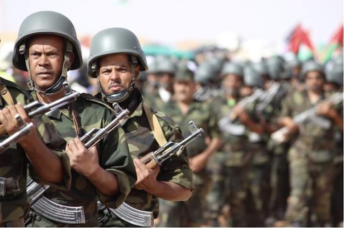 Reino Unido renueva su pleno apoyo a una solución que garantice el derecho del pueblo saharaui a la autodeterminación.
