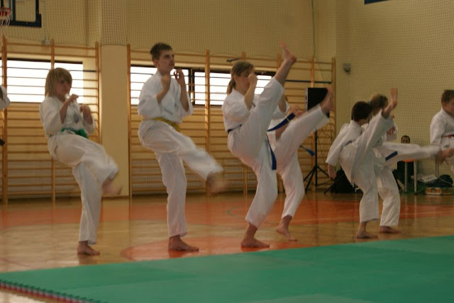 DO 2011 Pokaz karate - DSC00084_1.JPG