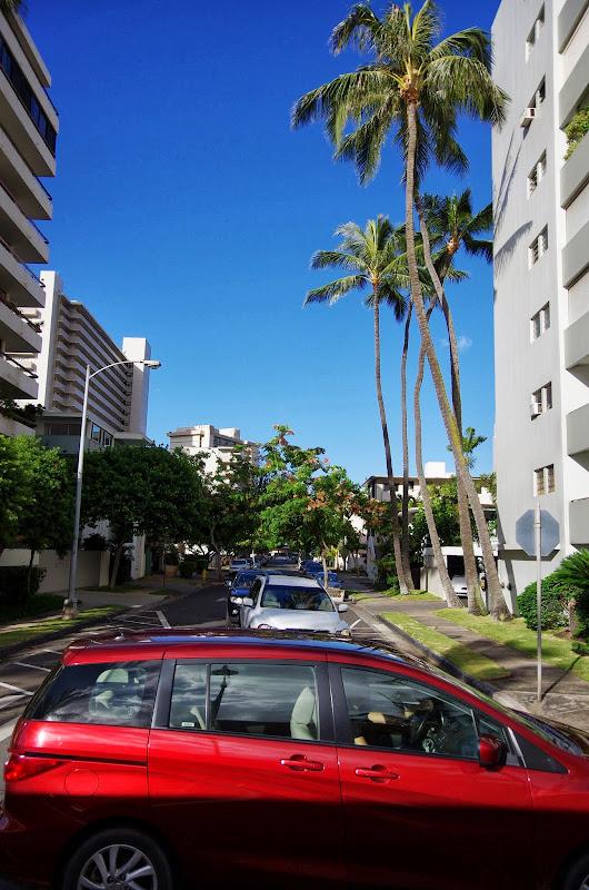 06-18-13 Waikiki, Coconut Island, Kaneohe Bay - IMGP6927.JPG