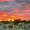 Katie Russell Avatar