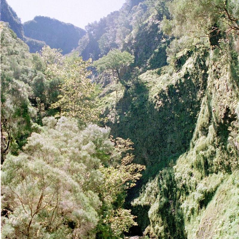 Madeira_14 Madeira Valley.jpg