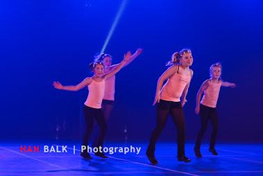 Han Balk Voorster Dansdag 2016-3954.jpg
