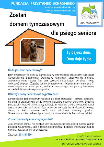 Domy tymczasowe - plakat