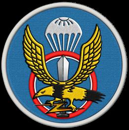 파일:attachment/육군 특수전사령부/ROK-SF.png