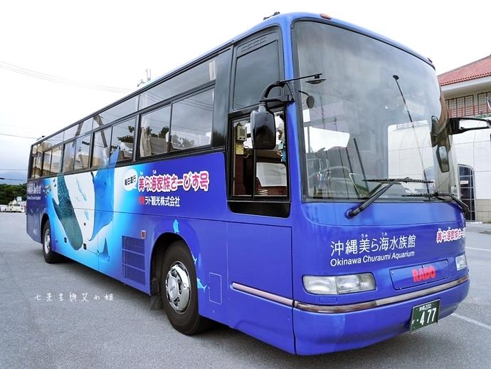 47 沖繩自由行 觀光巴士一日遊 推薦 美麗海家族服務號觀光巴士 Rado觀光巴士 美麗海水族館 琉宮城蝴蝶園 名護鳳梨園