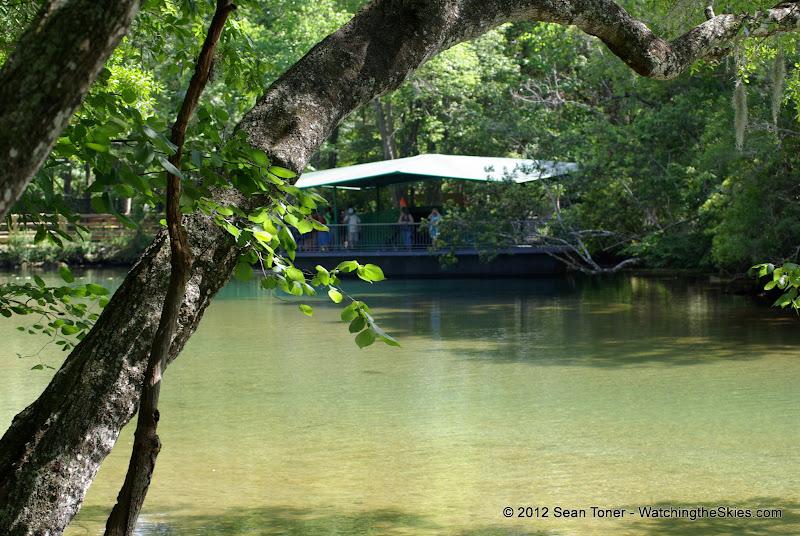 04-07-12 Homosassa Springs State Park - IMGP4521.JPG