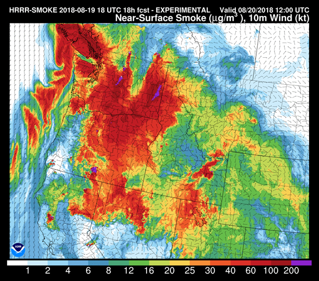 Near-surface smoke forecast in the U.S. West, 19 August 2018. Graphic: NOAA