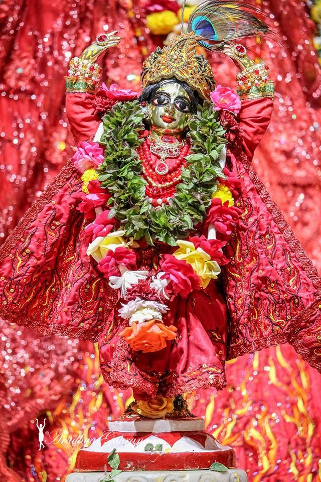 ISKCON Mayapur Deity Darshan 06 Jan 2015 (6)