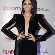 61st Britannia Filmfare Awards Party At JW Marriott Photos
