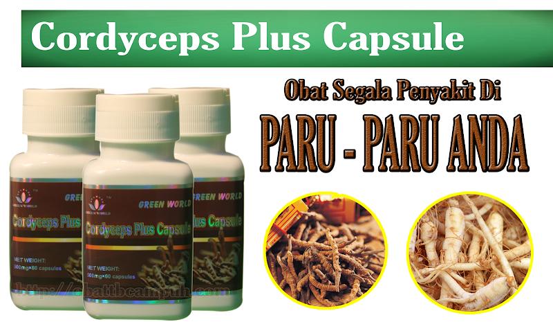 Khasiat Cordyceps Plus Capsule