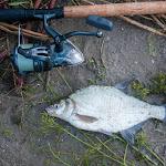 20160624_Fishing_Bakota_168.jpg
