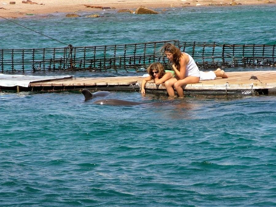 Эйлат, Дельфиний пляж