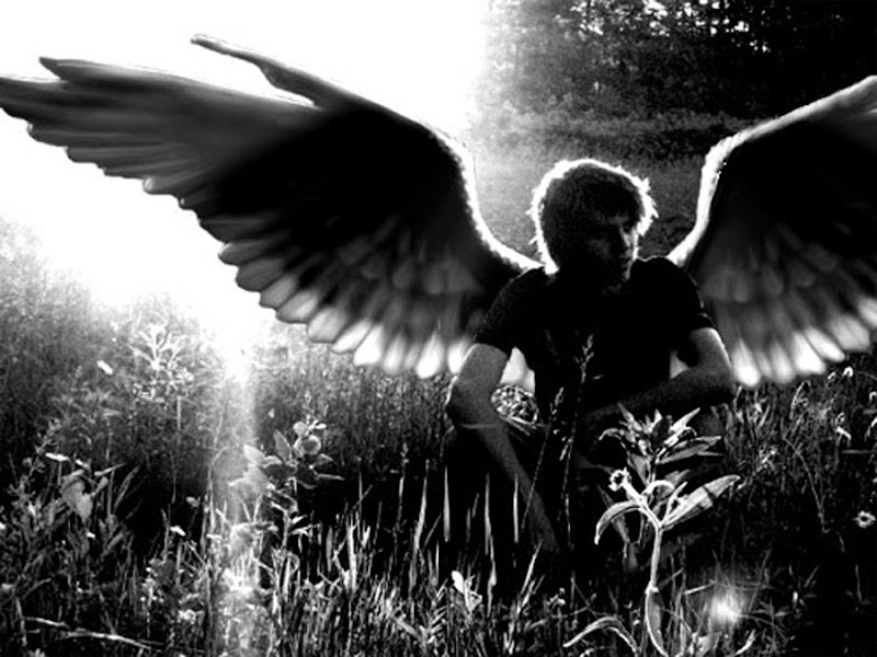 Angel On The Grass, Angels 2