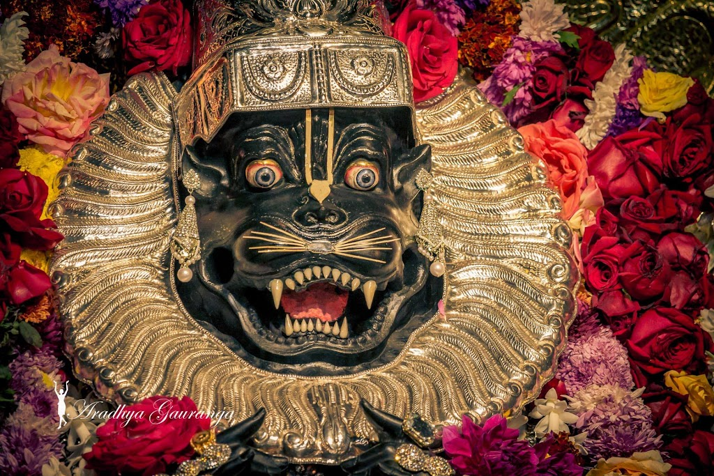 ISKCON Mayapur Deity Darshan 13 Jan 2017 (14)