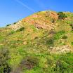 santiago-oaks-IMG_0434.jpg