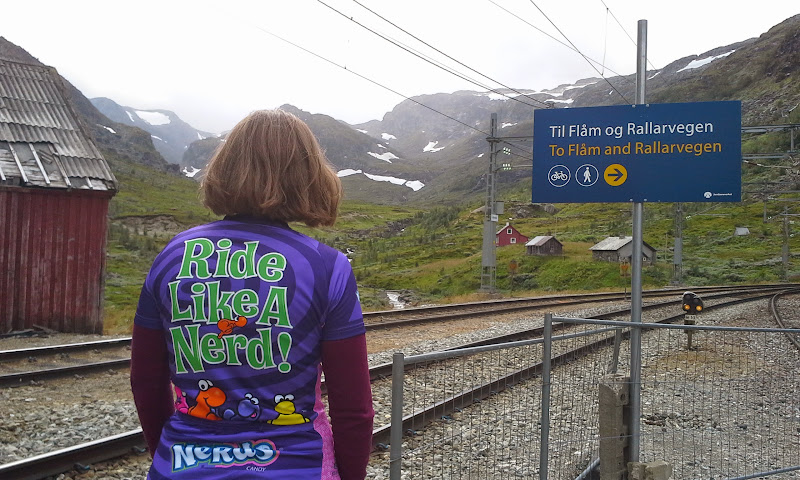 outside Myrdal rail station