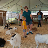 Fort Bend County Fair 2015 - 100_0191.JPG