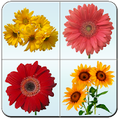Flower Memory Matching Game