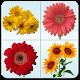 Flower Memory Matching Game Download on Windows