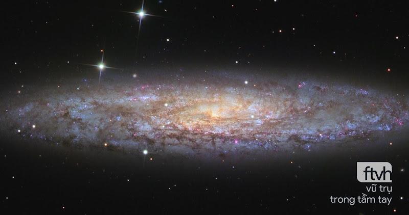 NGC 253: Ốc đảo vũ trụ đầy bụi bẩn