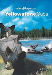Yellowstone Cubs