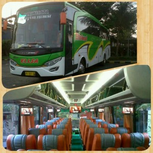 Sewa Bus Solo Seat 50